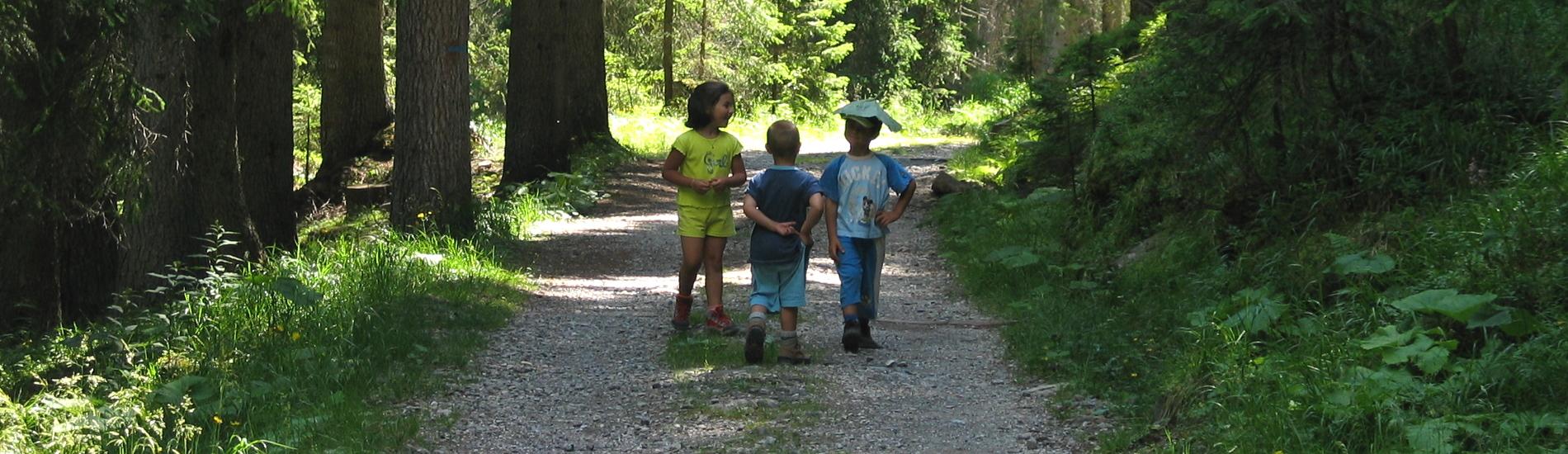 Vacanze con Bambini in Trentino Alto Adige