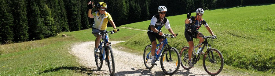 Mountain Bike in Trentino Alto Adige