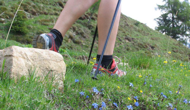 nordic-walking-trentino-2