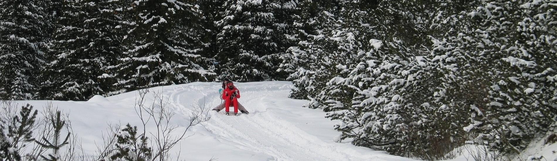 Tante Avventure tra la Neve con la Slitta