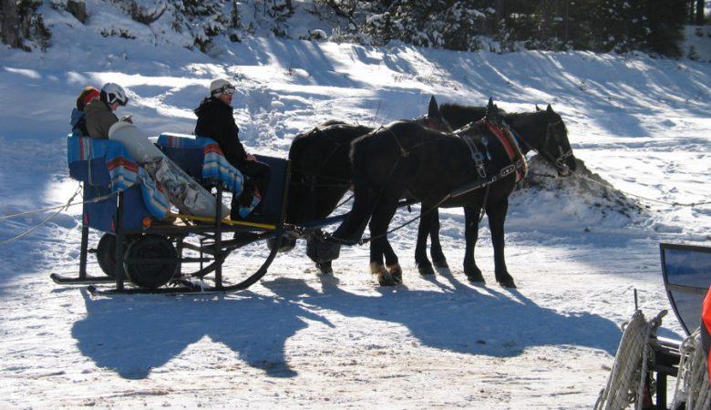 escursioni-sulla-neve-3