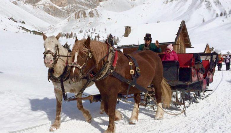escursioni-sulla-neve-6