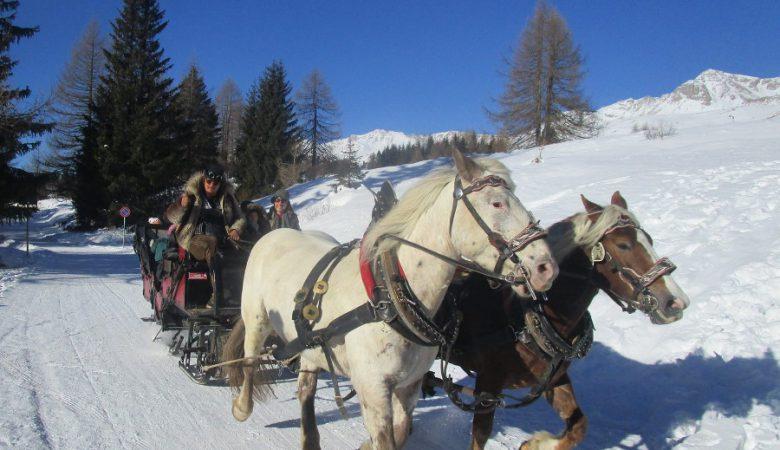 escursioni-sulla-neve-7