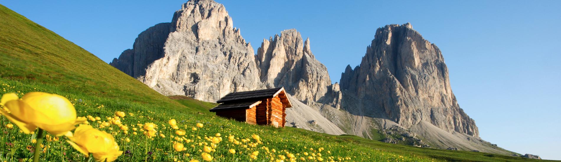 La tua Estate in Trentino
