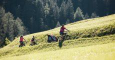 bicicletta-montagna-estate-2-1024×683